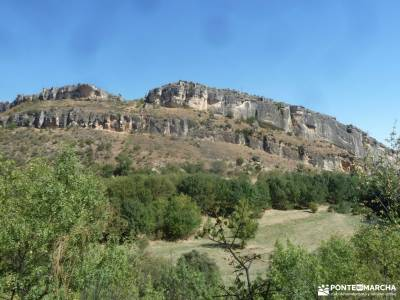 Atazar-Meandros Río Lozoya-Pontón de la Oliva-Senda Genaro GR300;arboles de montaña parque natura